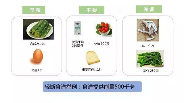减肥饮食轻断食林希达减肥产品美国图片