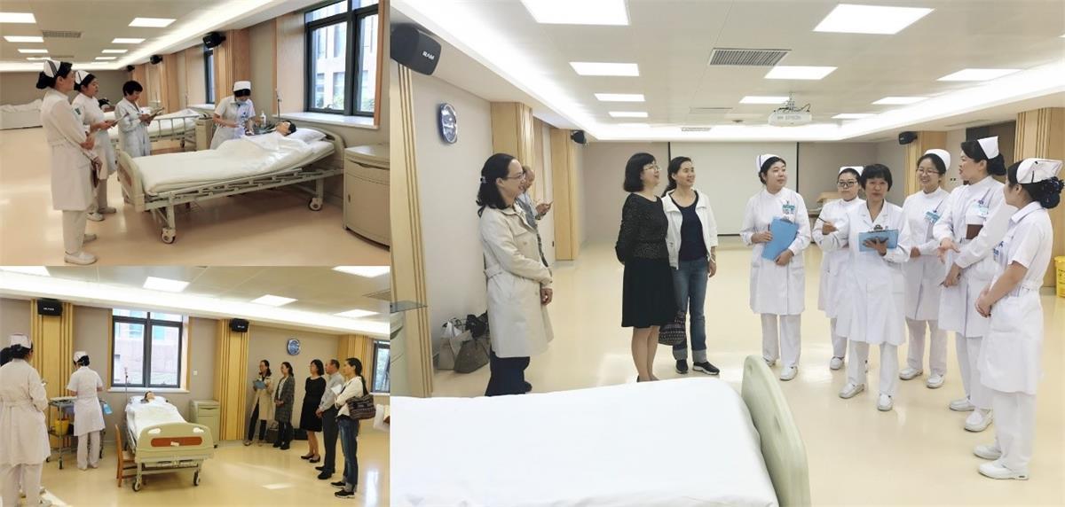 郑州大学护理学院陈勤副院长一行莅临我院硕士研究生临床实践座谈会